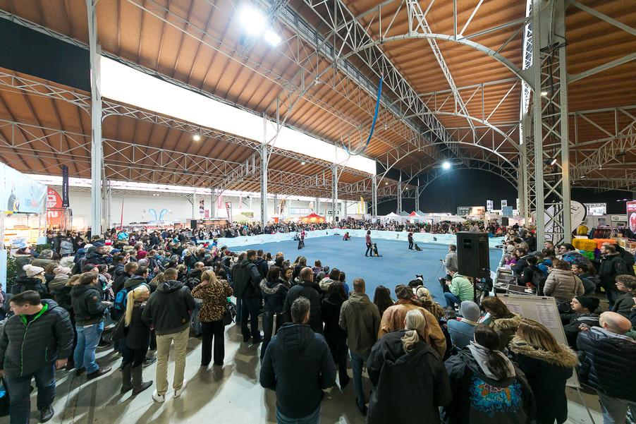 Bild 5 | Haustiermesse Wien