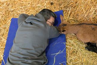 Bild 20 | Haustiermesse Wien