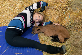 Bild 22 | Haustiermesse Wien