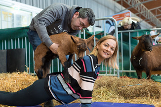 Bild 23 | Haustiermesse Wien