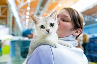 Bild 27 | Haustiermesse Wien