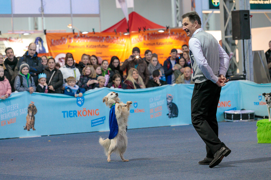 Bild 34 | Haustiermesse Wien