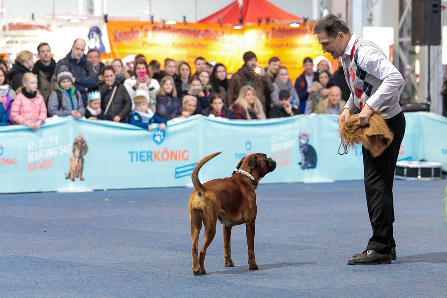 Bild 37 | Haustiermesse Wien