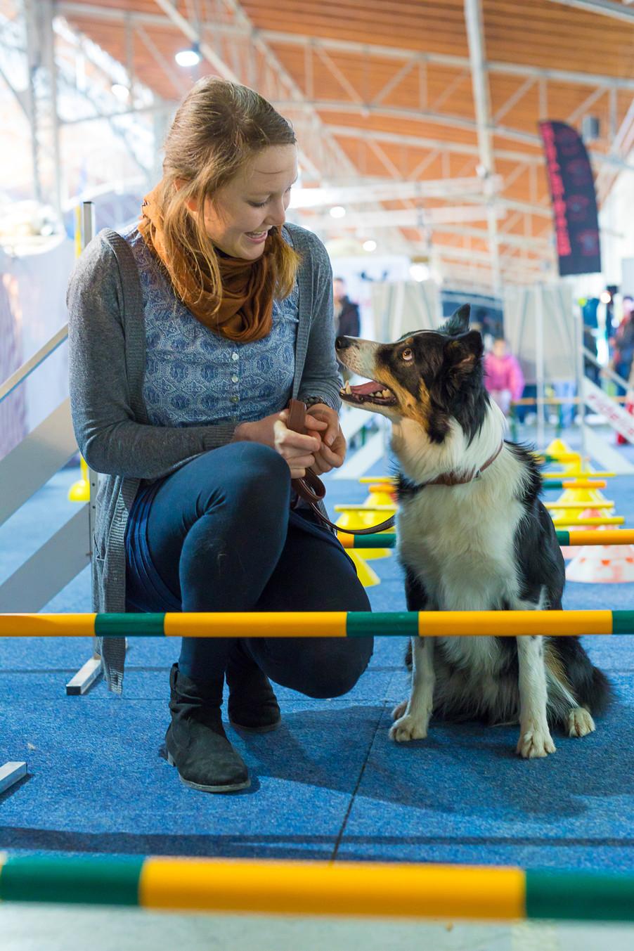 Bild 41 | Haustiermesse Wien