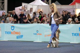 Bild 47 | Haustiermesse Wien