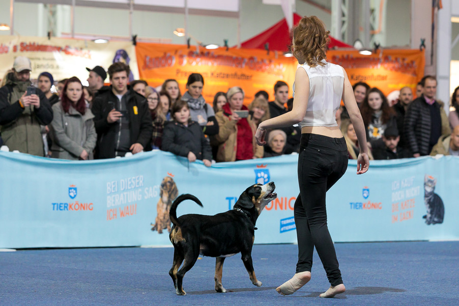 Bild 50 | Haustiermesse Wien