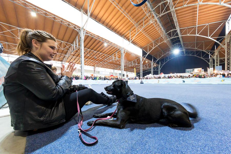 Bild 53 | Haustiermesse Wien