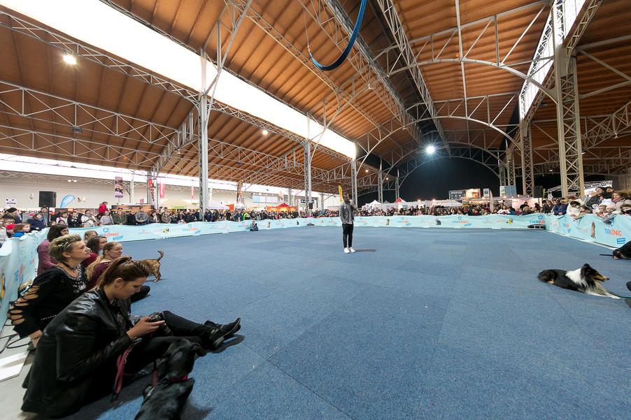 Bild 54 | Haustiermesse Wien