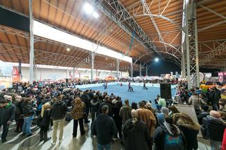 Bild 57 | Haustiermesse Wien
