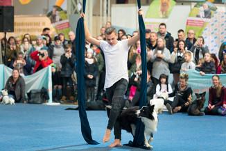 Bild 58 | Haustiermesse Wien