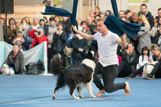Bild 59 | Haustiermesse Wien