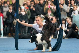 Bild 61 | Haustiermesse Wien