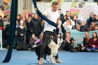 Bild 63 | Haustiermesse Wien