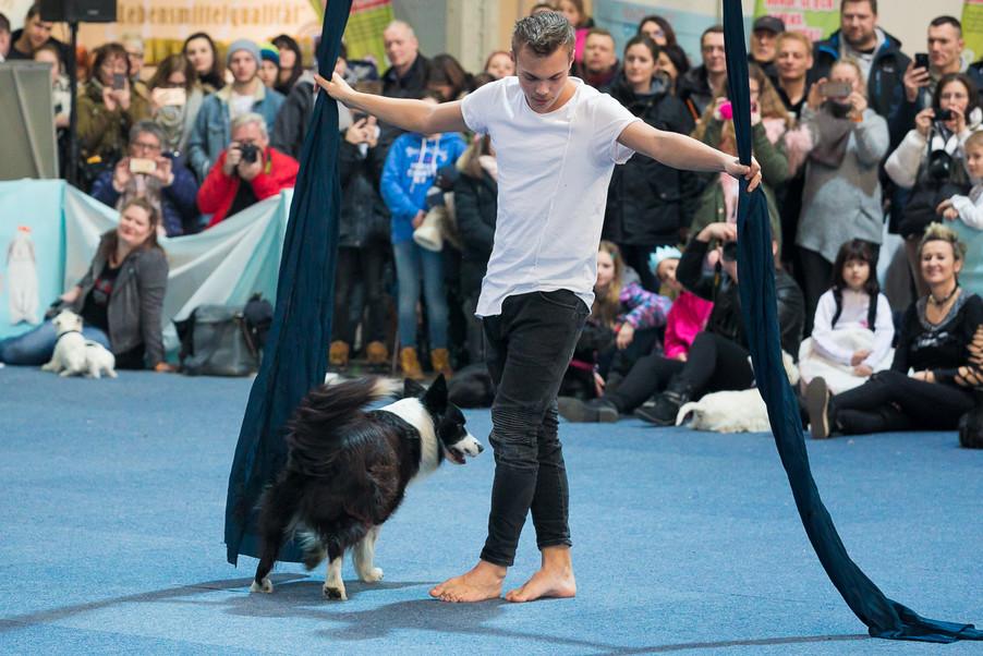 Bild 64 | Haustiermesse Wien