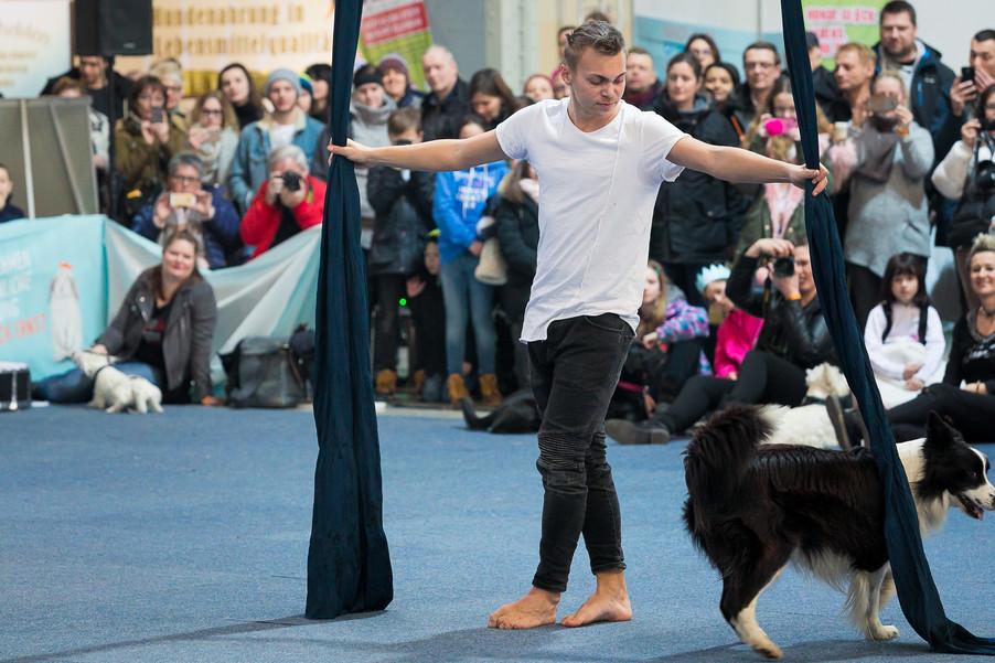 Bild 65 | Haustiermesse Wien