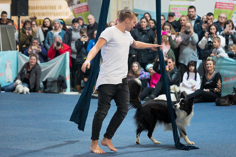 Bild 66 | Haustiermesse Wien