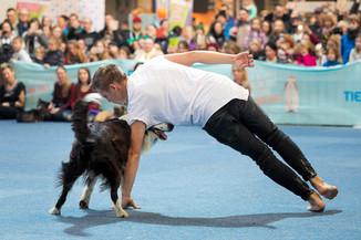 Bild 67 | Haustiermesse Wien