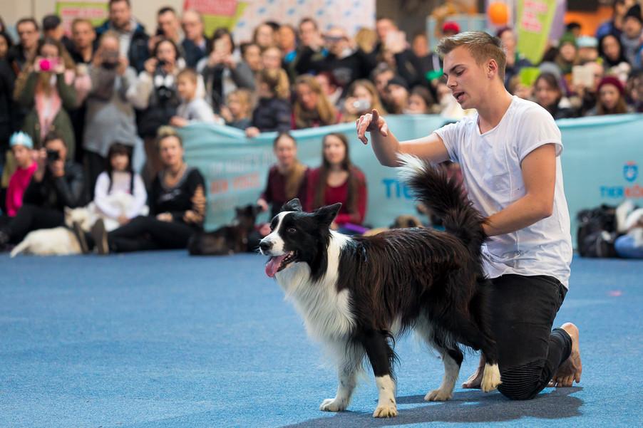 Bild 68 | Haustiermesse Wien