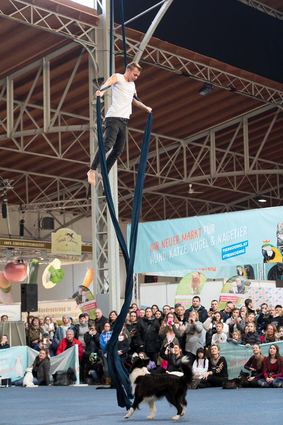 Bild 69 | Haustiermesse Wien