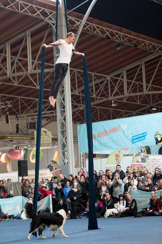 Bild 70 | Haustiermesse Wien