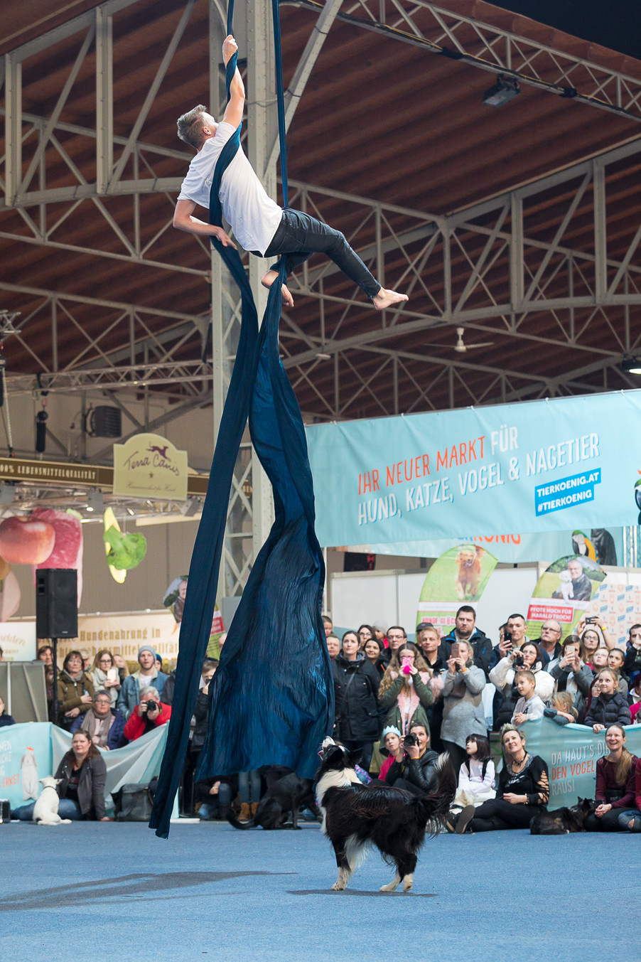 Bild 72 | Haustiermesse Wien