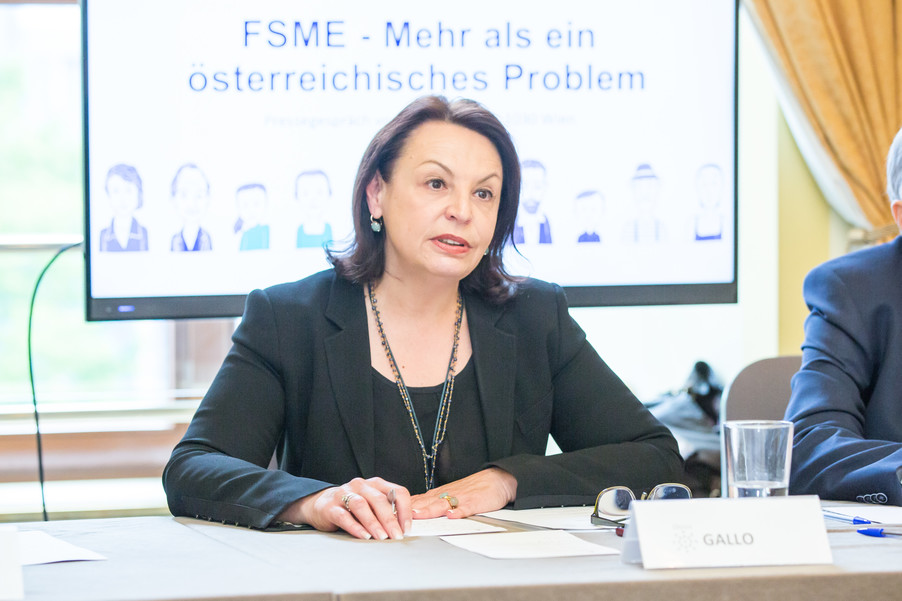 Bild 14 | FSME in Europa (Arbeitstitel)