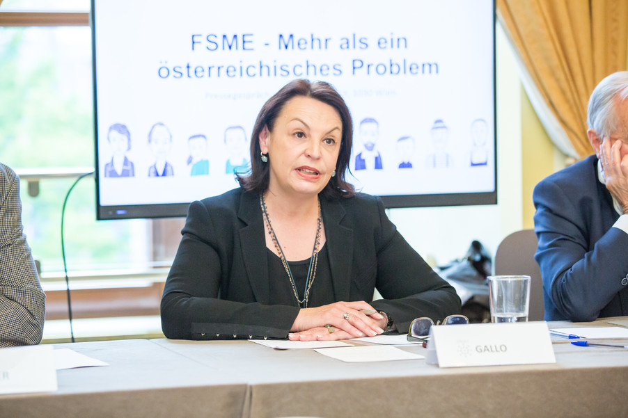 Bild 15 | FSME in Europa (Arbeitstitel)