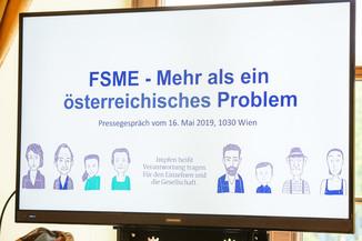 Bild 4 | FSME in Europa (Arbeitstitel)