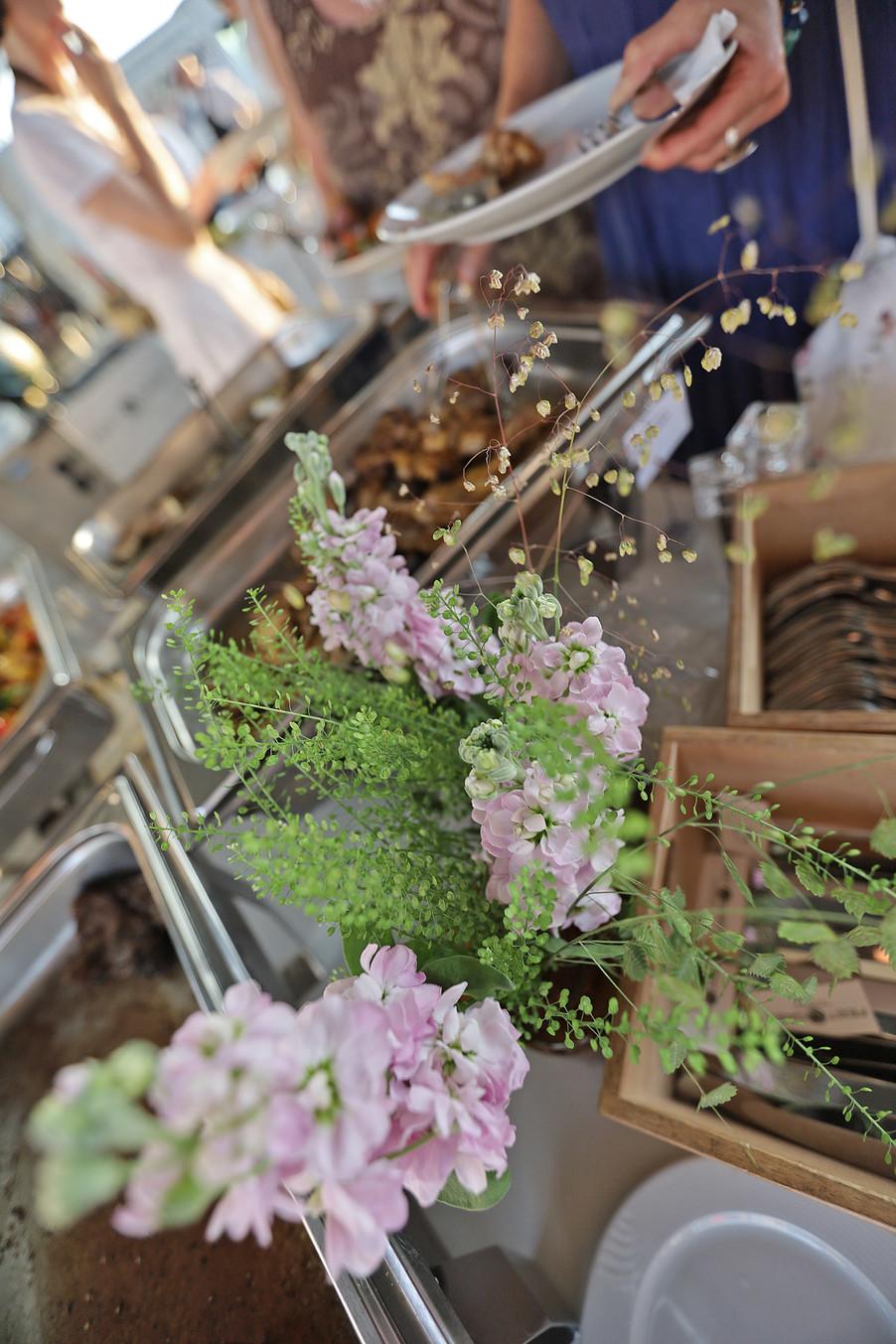Bild 204 | Sommergespräch der Apothekerkammer OÖ