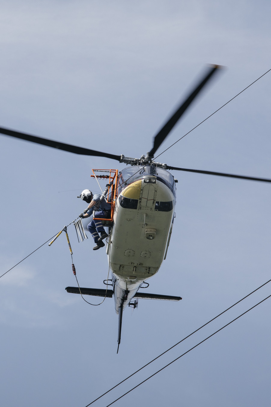Bild 32 | Hubschrauberflug Vogelschutz