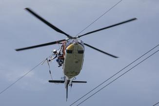 Bild 33 | Hubschrauberflug Vogelschutz