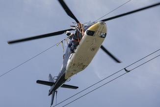 Bild 34 | Hubschrauberflug Vogelschutz