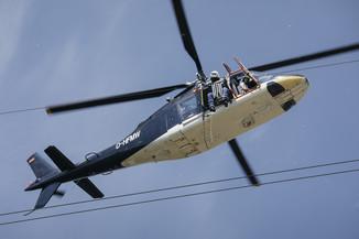 Bild 39 | Hubschrauberflug Vogelschutz