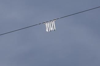Bild 42 | Hubschrauberflug Vogelschutz