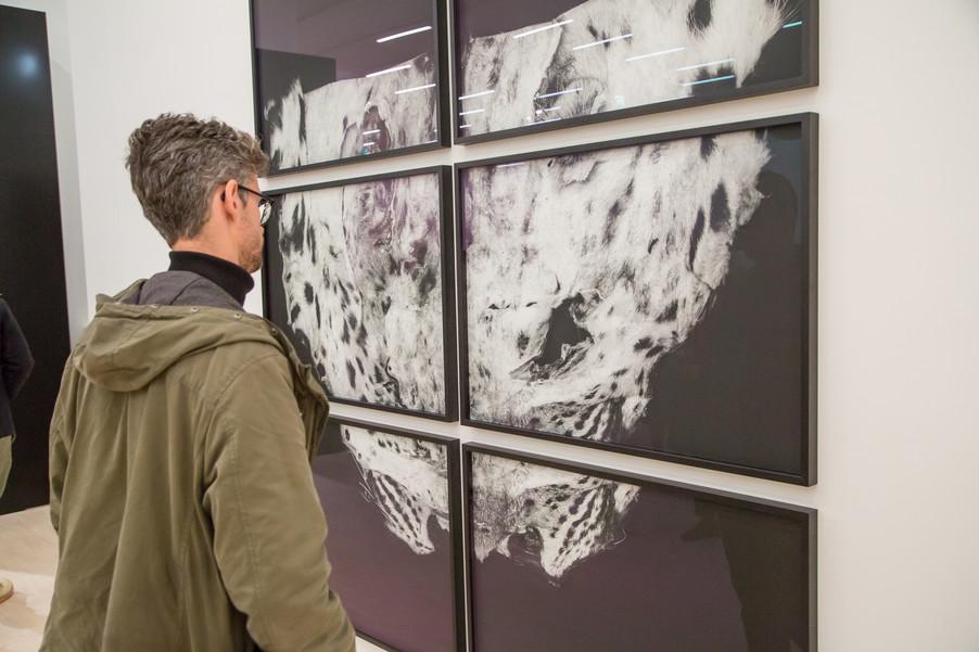 Bild 53 | Ausstellungseröffnung: Landesgalerie Niederösterreich