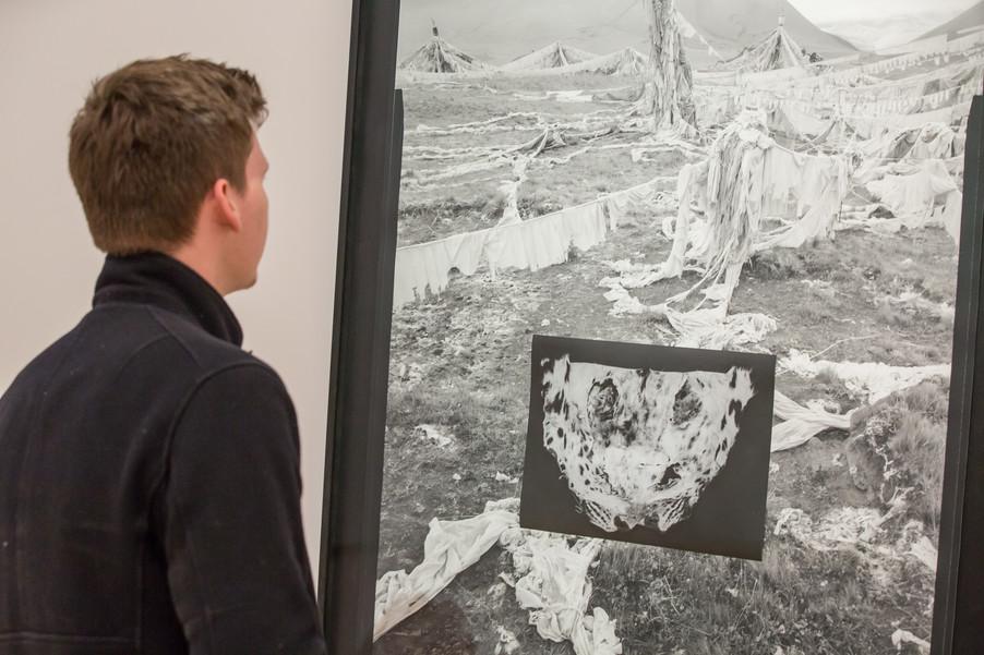 Bild 74 | Ausstellungseröffnung: Landesgalerie Niederösterreich