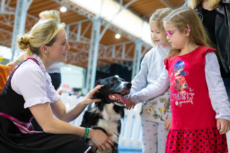 Bild 10 | Haustiermesse Wien