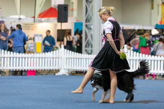 Bild 12 | Haustiermesse Wien