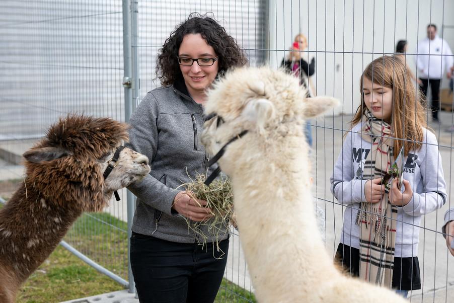 Bild 32 | Haustiermesse Wien