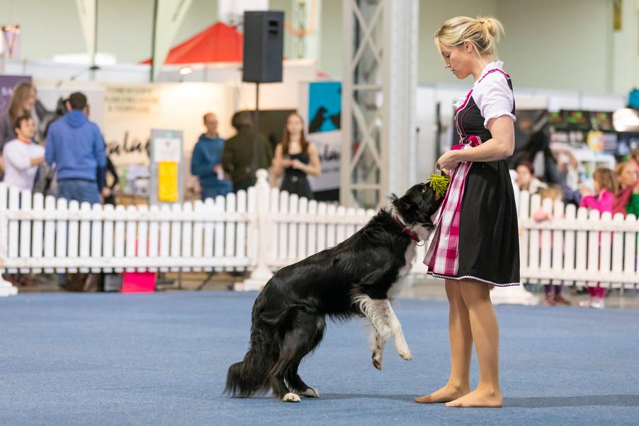Bild 40 | Haustiermesse Wien