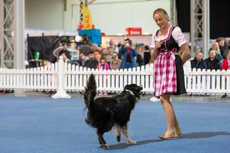Bild 42 | Haustiermesse Wien