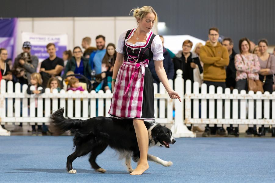 Bild 43 | Haustiermesse Wien