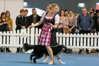 Bild 44 | Haustiermesse Wien