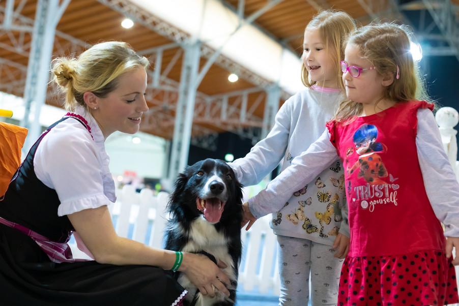 Bild 48 | Haustiermesse Wien