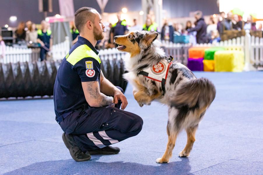 Bild 78 | Haustiermesse Wien
