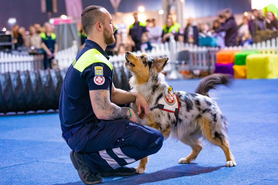 Bild 79 | Haustiermesse Wien