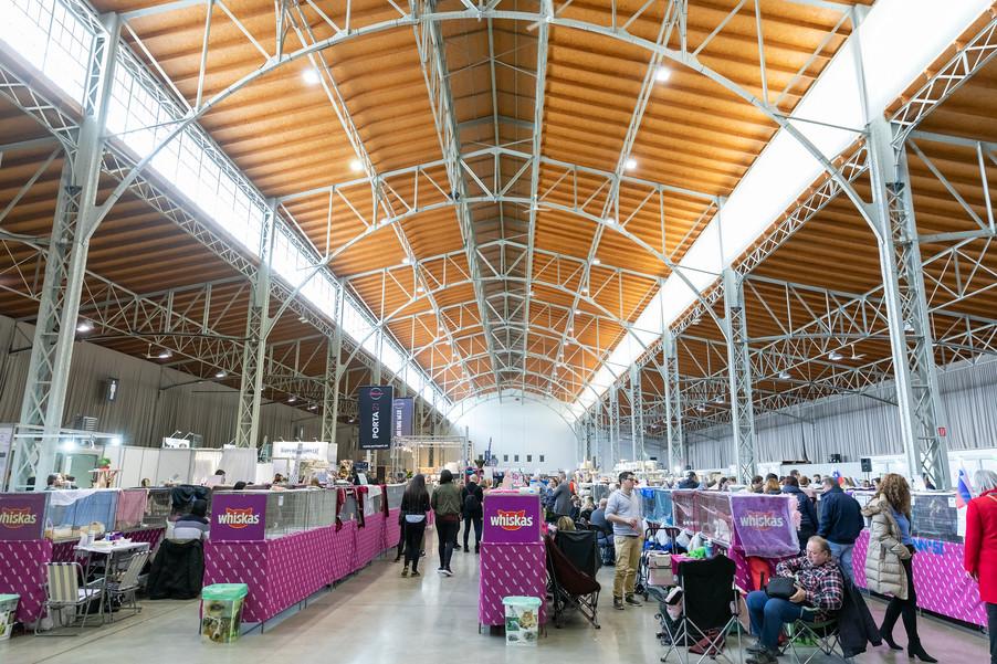 Bild 126 | Haustiermesse Wien