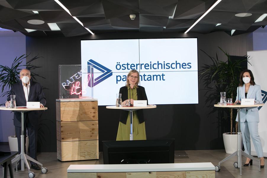 Bild 12 | Österreichisches Patentamt: Jahresbilanz