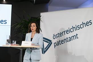 Bild 13 | Österreichisches Patentamt: Jahresbilanz
